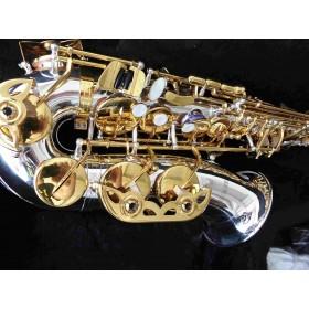 Saxophone : Alto Bicolore...