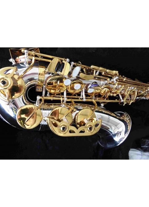 Saxophone : Alto Bicolore 6430 SC