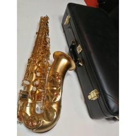 occasion :  Saxophone Alto...